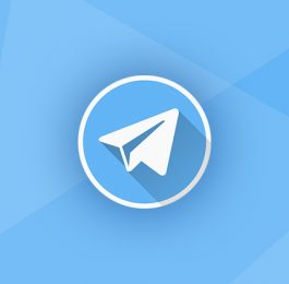 ریپورت چت تلگرام چیست؟ چطور بفهمیم ریپ چت شدیم؟